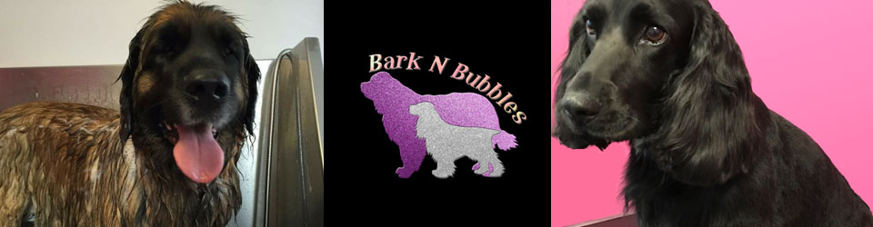 Bark 'n' Bubbles