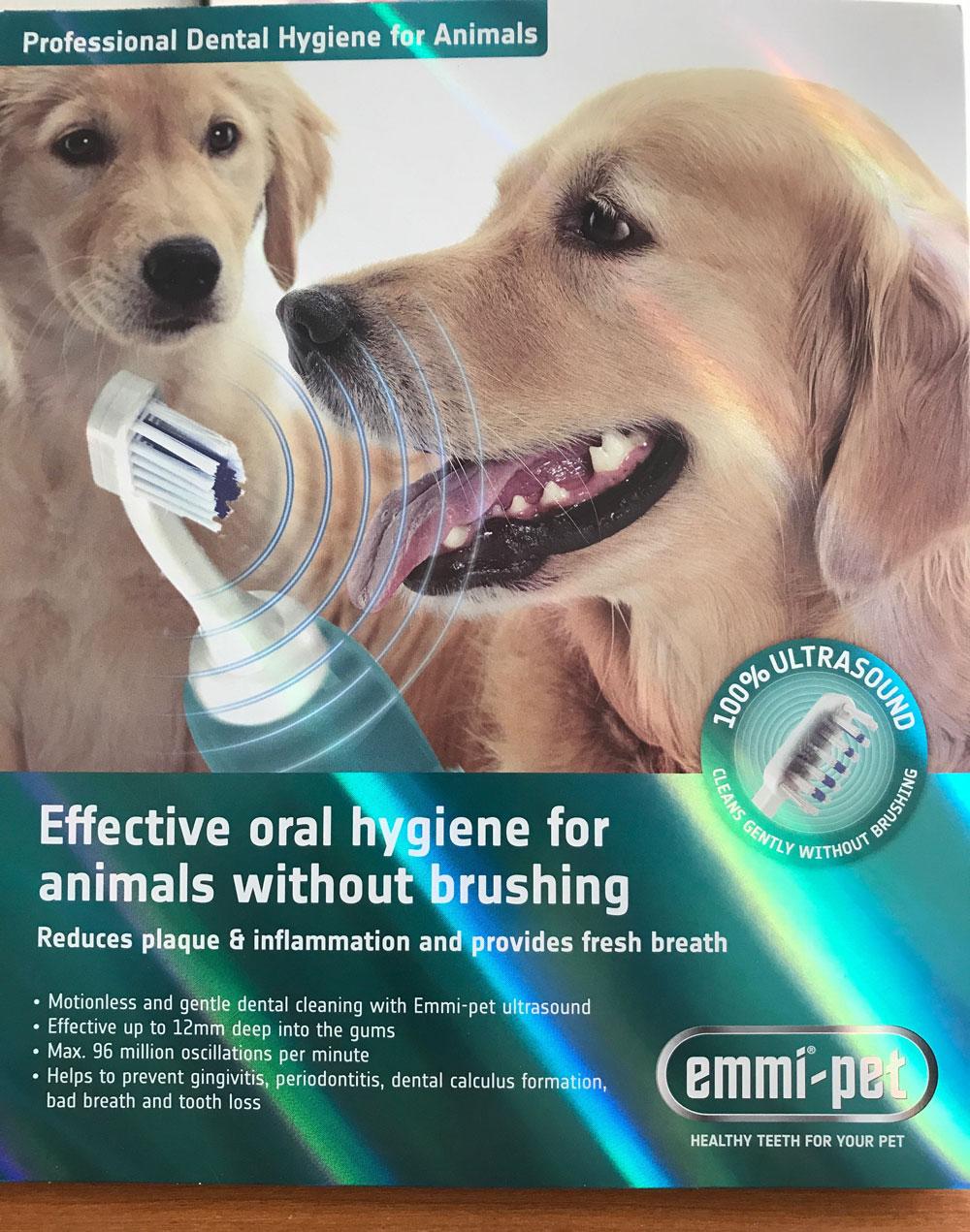 Ultrasound For Bark Dog
